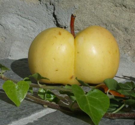 Le mele di Poggio.